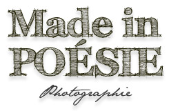 logo Made in POESIE